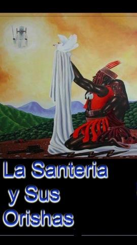 Solteros Sin–241512